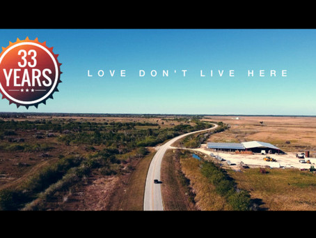 Love Don't Live Here
