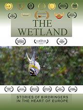The Wetland.jpg