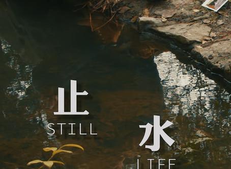 STILL LIFE (Trailer)
