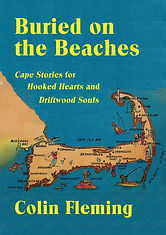 Beaches fleming cover2.jpg