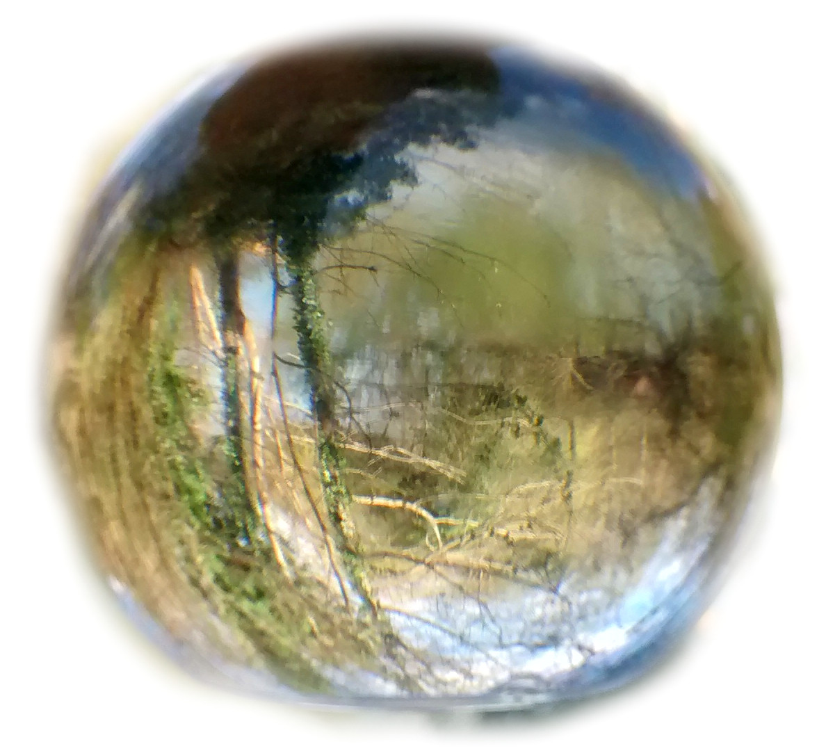 globe 27.JPEG
