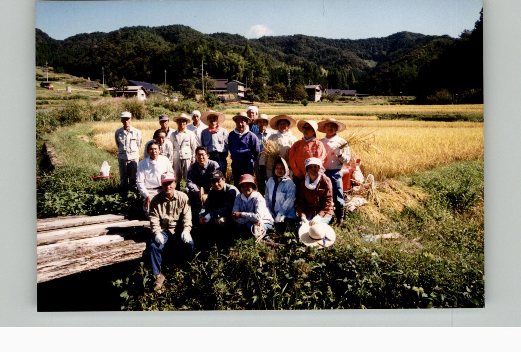 棚田オーナー稲刈り20010923e