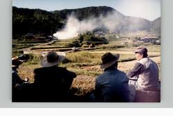 棚田オーナー稲刈り20010923c