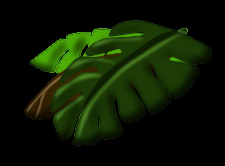 Island Buddies Leaves