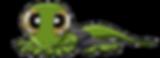 Gecko Eyes