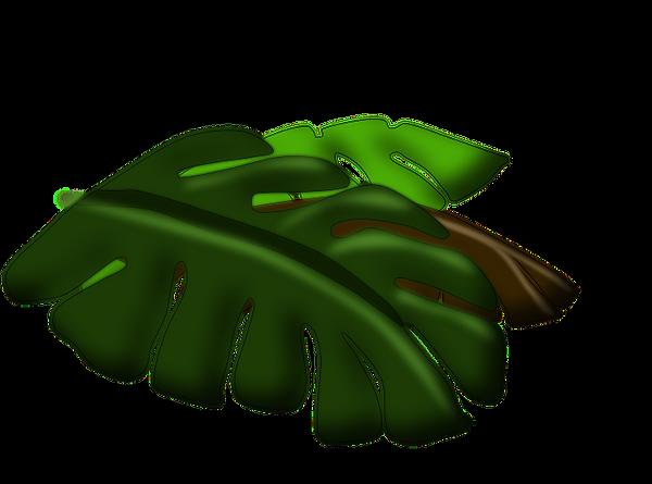 Island Buddies Leaf