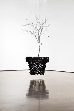 2010 Plant Pot