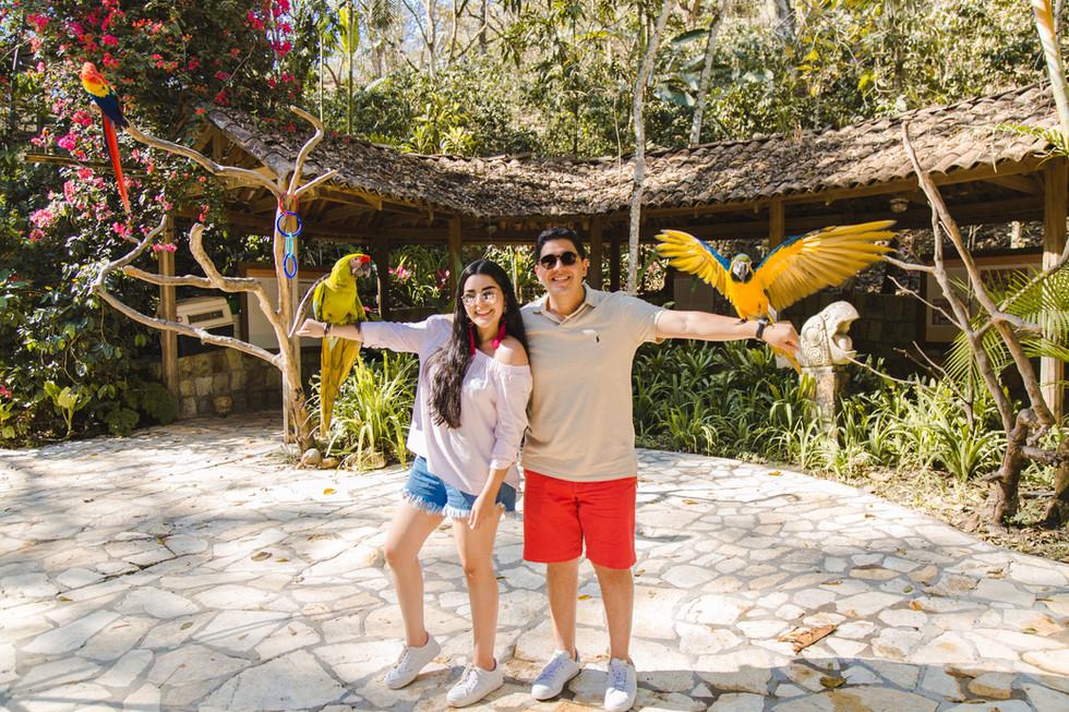 Macaw Mountain en Copán Ruinas