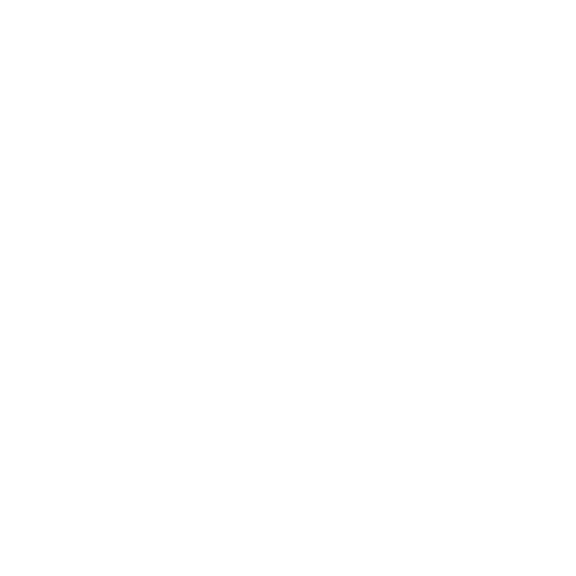flower5.10.png