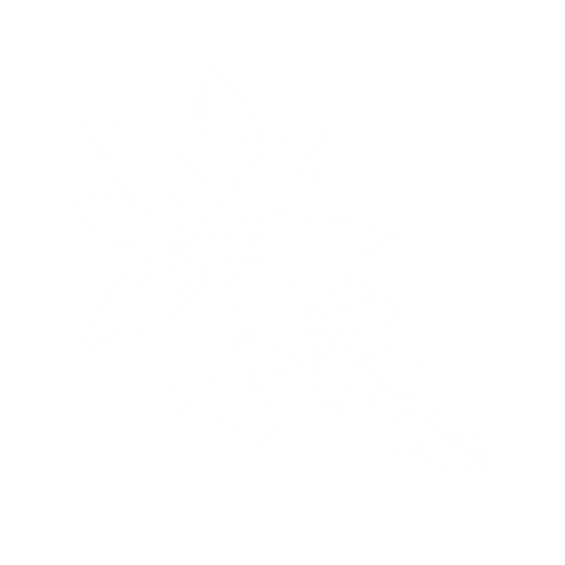 flower6.10.png