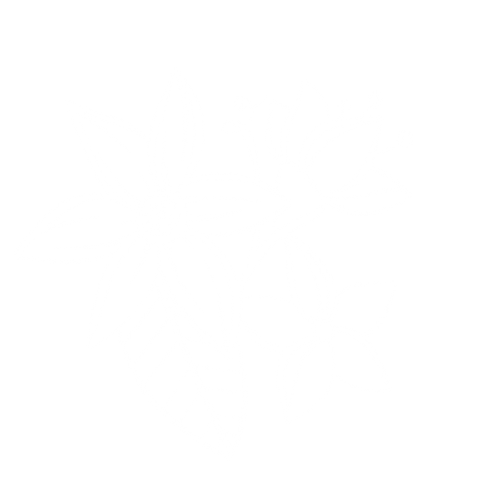 flower4.10.png