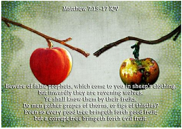 So Then, You Will Know Them By Their Fruits