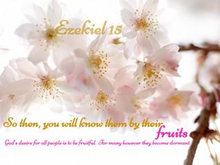 Bearing Fruit or Being A Fruitful