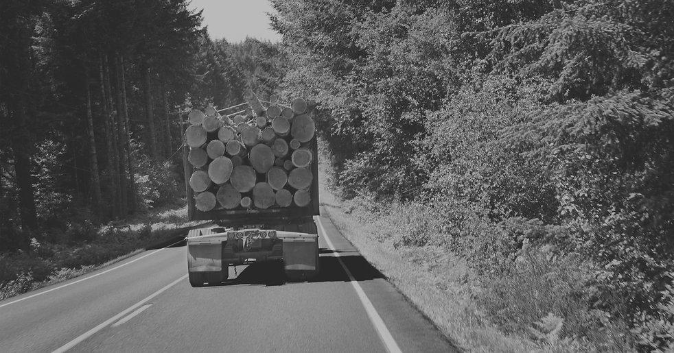 Truck%20of%20Logs_edited.jpg