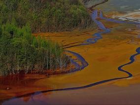 Water_Pollution_edited_edited.jpg