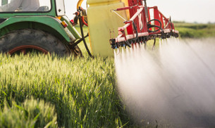 Pesticides are detected in the vast majority of U.S. residents, according to Hertz-Picciotto.