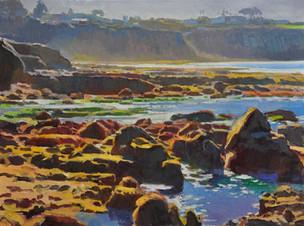 Low Tide La Jolla - 18x24, by Ray Roberts