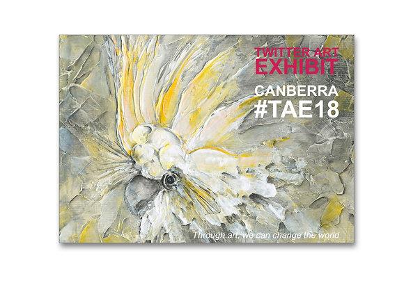TAE18 Catalogue Australia