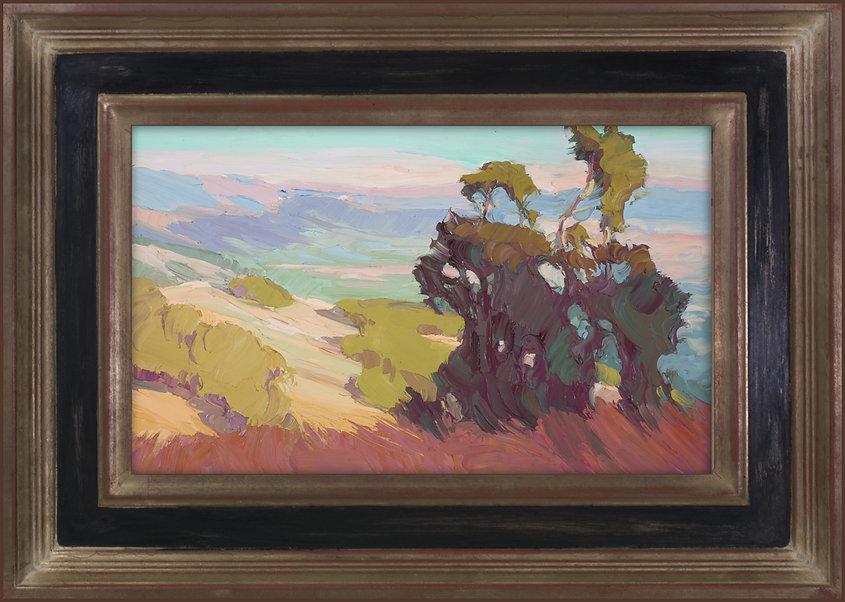 Carole_Gray-Weihman_Mountain_Vista_Light