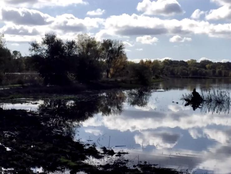 Cosumnes_River_Preserve.jpg
