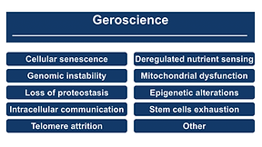 geroscience.png