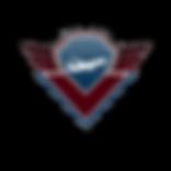 Team Jetsim logo TRANS.png