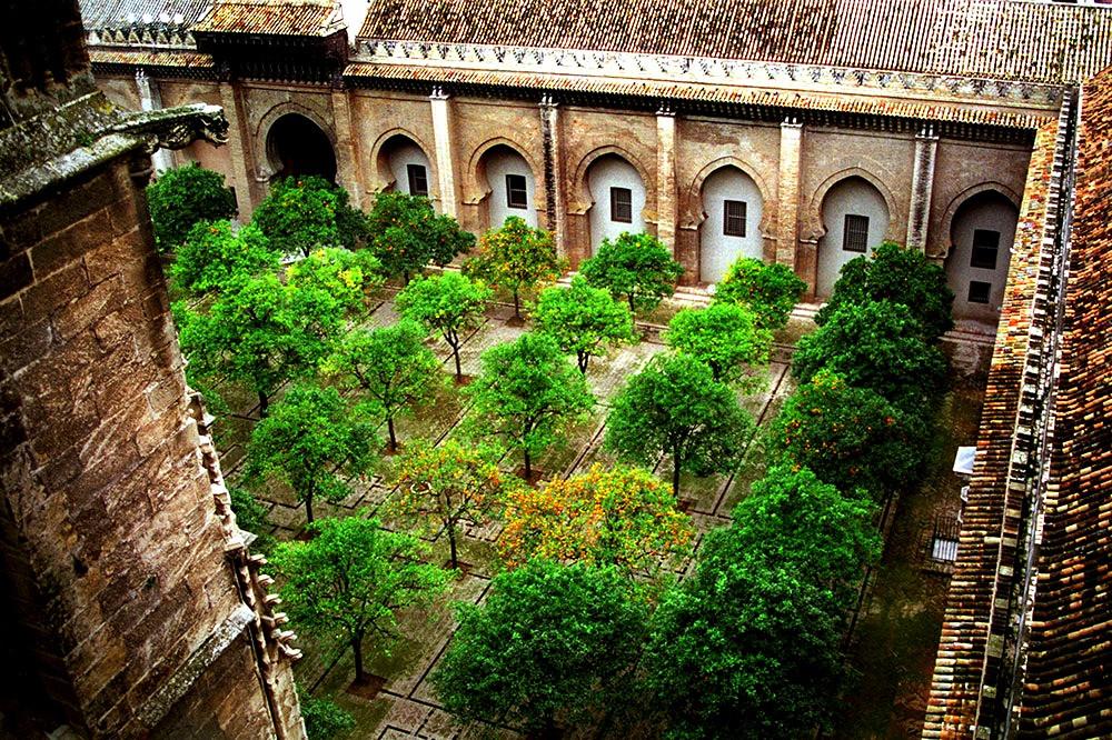 Patio de los Naranjos - Catedral de Sevilha - Espanha