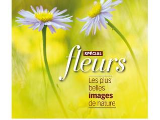 Mon deuxième article dans une superbe revue Macro Photographie