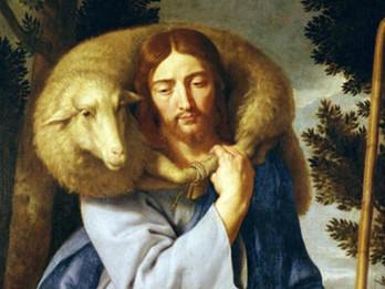 A Caring Shepherd