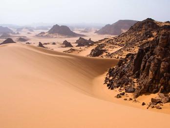 Lent: A Journey in the Desert