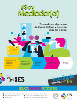 Infografia del mes IES Medicacion