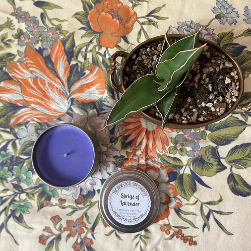 Sprigs of Lavender 4 oz Candle Tin