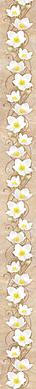 Сирокко цветок.png