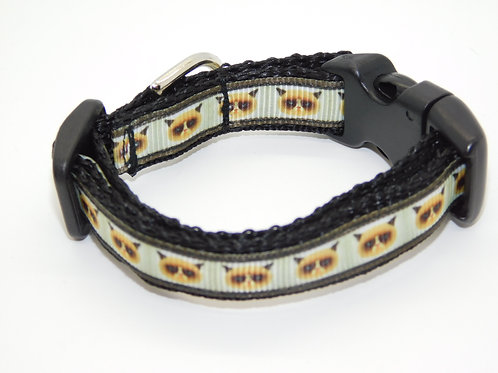 Grumpy Cat Collar