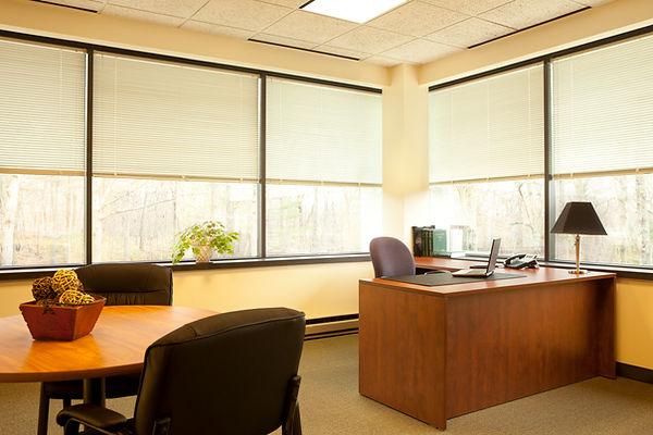 WorkCentral Large Office.jpg