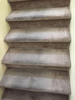 carpet cleaning service las vegas