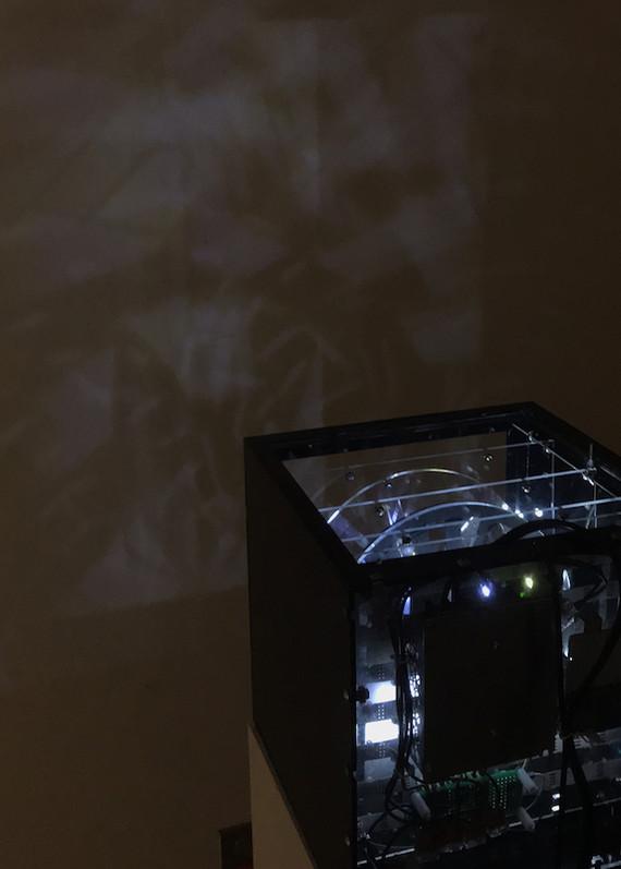 light box 03.JPG