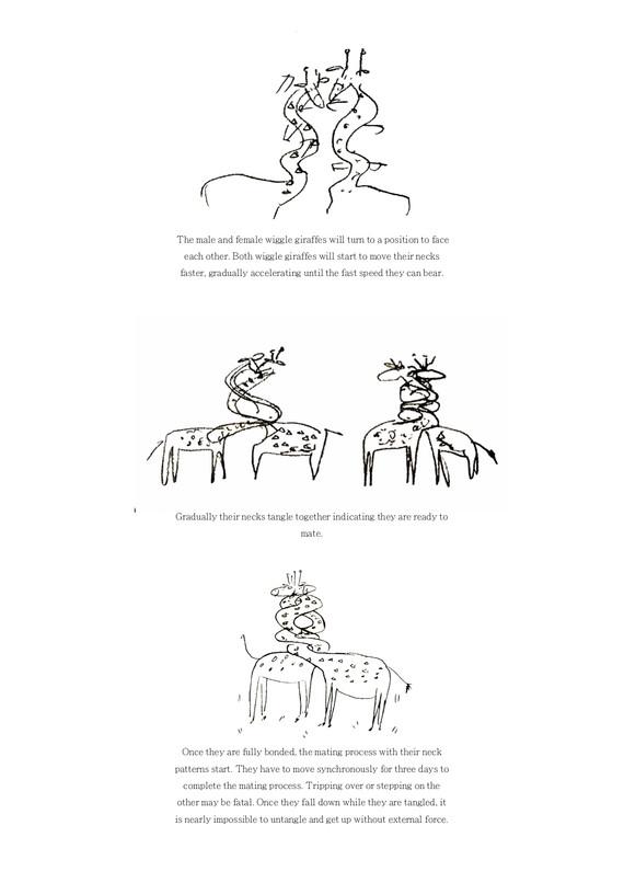 giraffe diagram1.jpg
