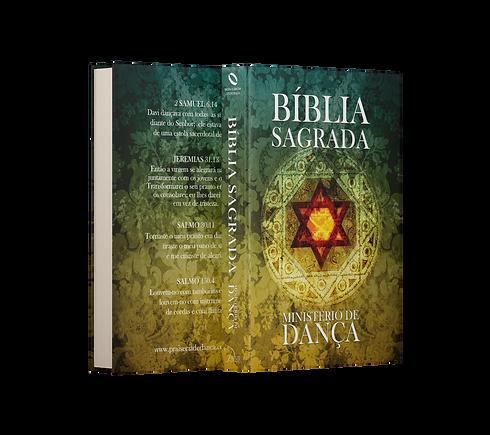 Bíblia - alta - Fundo transparaente.png
