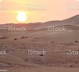 SUNRISE-SAFARI.jpg