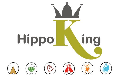logo hippoking met .jpg