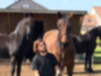 hoefsmidjorgen met paarden