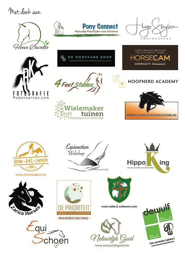 sponsors overzicht.png