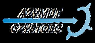 logo_AZYMUT_—_kopia.png