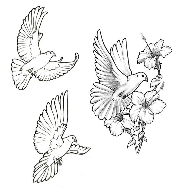 Flash_bird_01.jpg