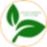 Veggie options icon.png