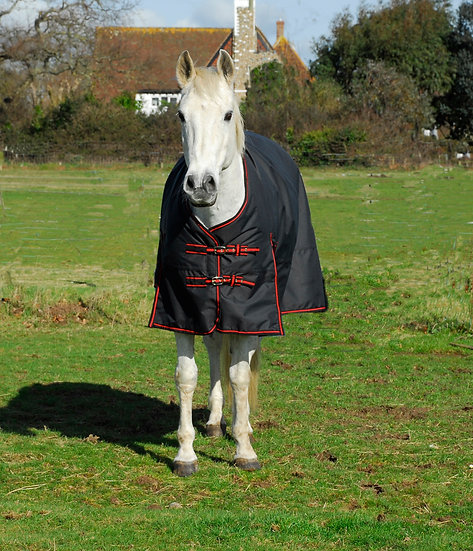 Rhinegold Thor 350g Turnout Rug  BLACK/RED