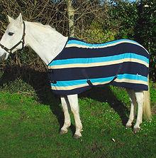 Rhinegold turquoise fleece.jpg