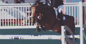 Showjumping Clinic with Dale Burnham