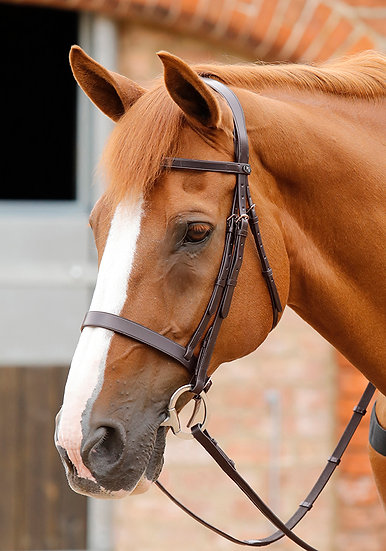 Premier Equine Primo Hunter Bridle with Anatomical Poll